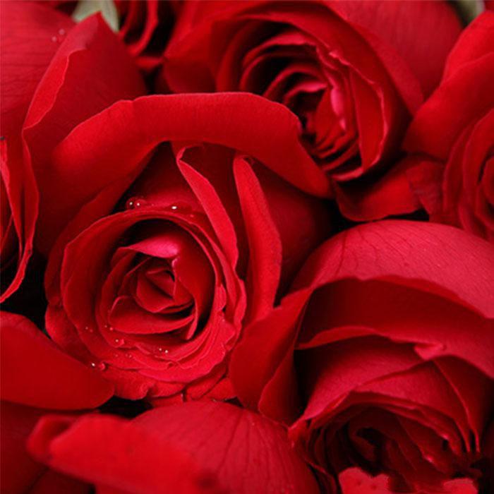 为你钟情_图片4