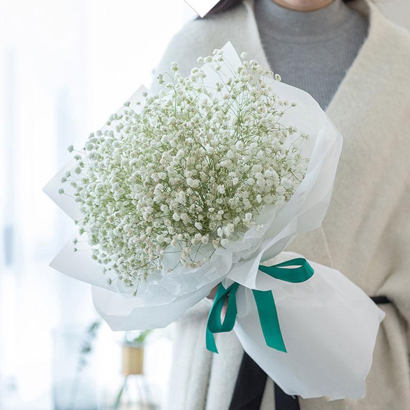 纯真浪漫_图片1