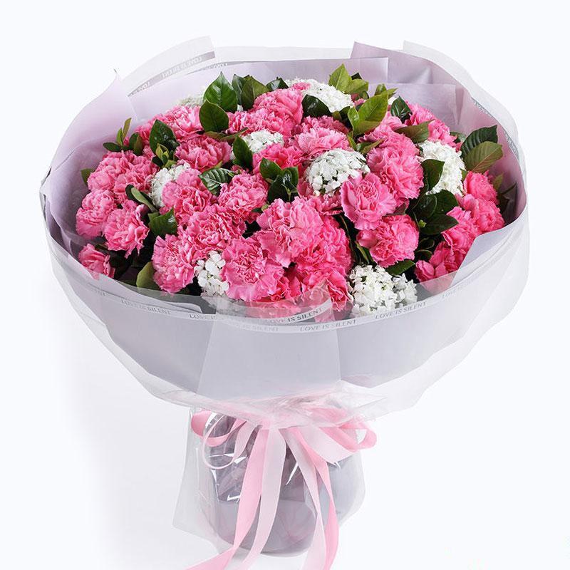 小小心愿_粉色康乃馨66枝、栀子叶2扎、白色石竹梅0.5扎