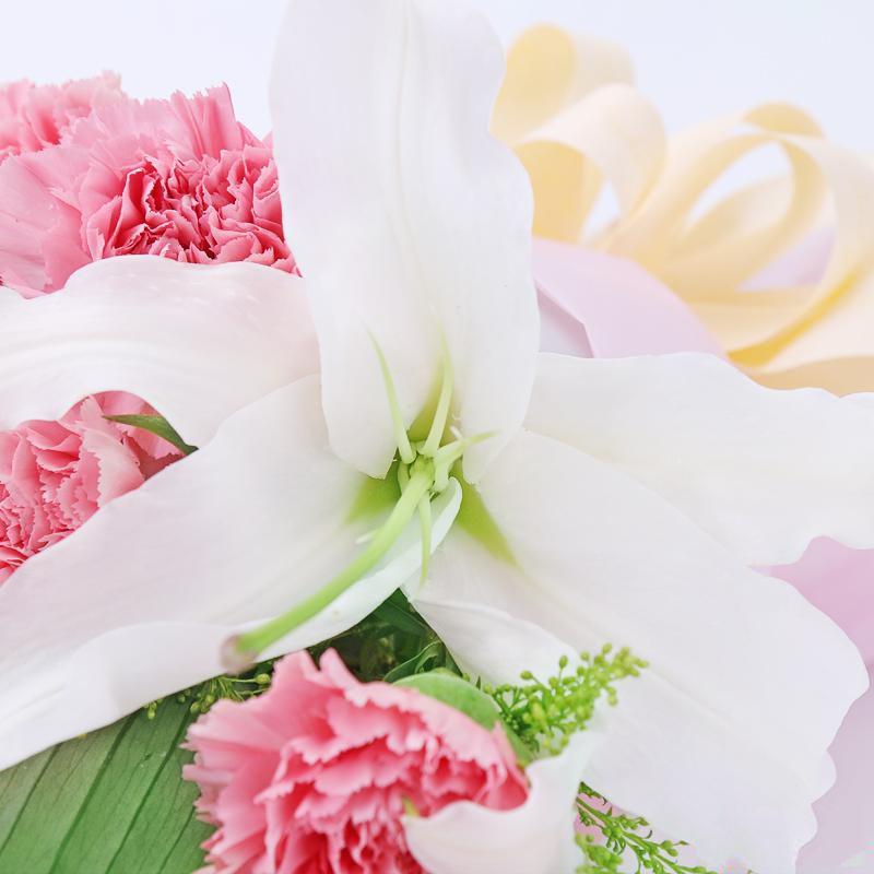 衷心祝福_图片4