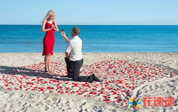 求婚时送什么花比较合适?求婚送花多少朵合适?