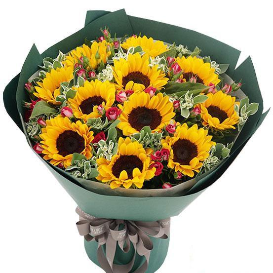 微笑向前_11枝向日葵,红色蔷薇、叶上花适量搭配