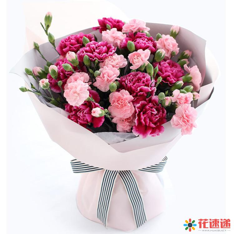 满怀感恩_紫红色康乃馨9枝,粉色多头康乃馨10枝