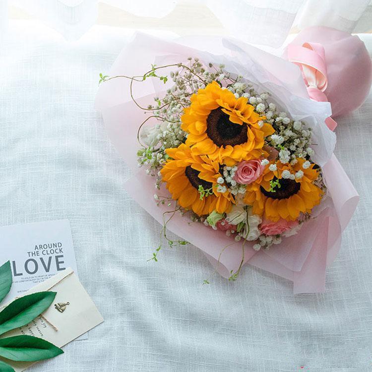 快乐阳光_图片2