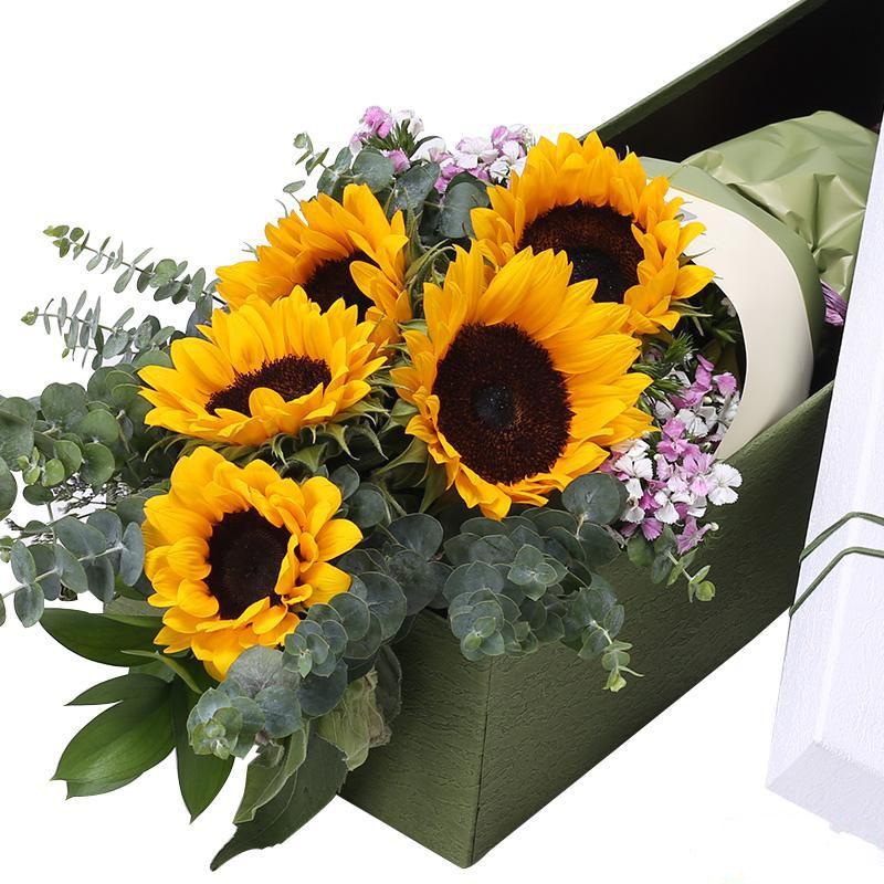 开心祝福_图片3