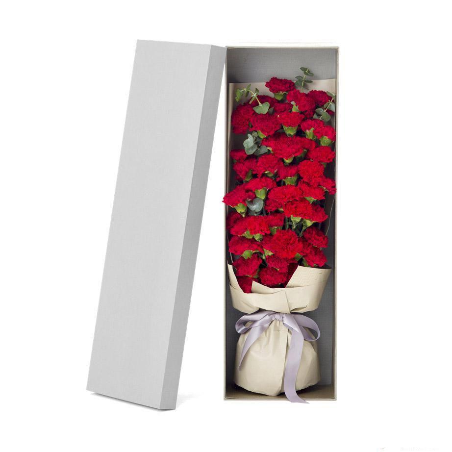 感谢有你_33枝红色康乃馨,0.3扎尤加利叶