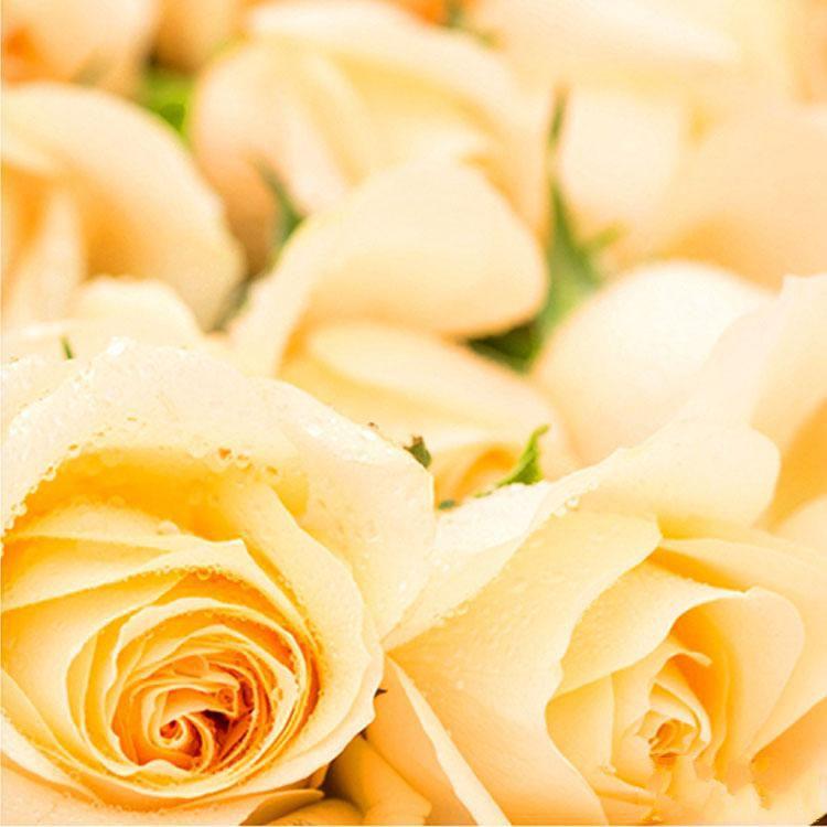 美丽的你_图片3