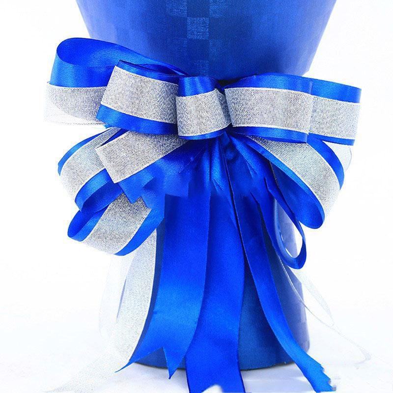 蓝色天使_图片4
