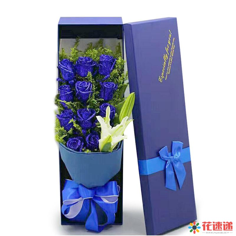 蓝色梦幻_图片1
