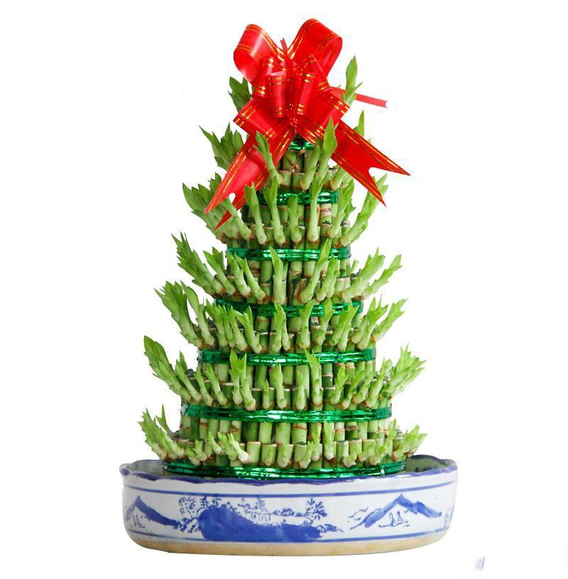 小型8层富贵塔盆栽